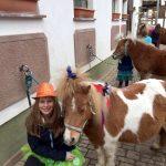 Pony pflegen